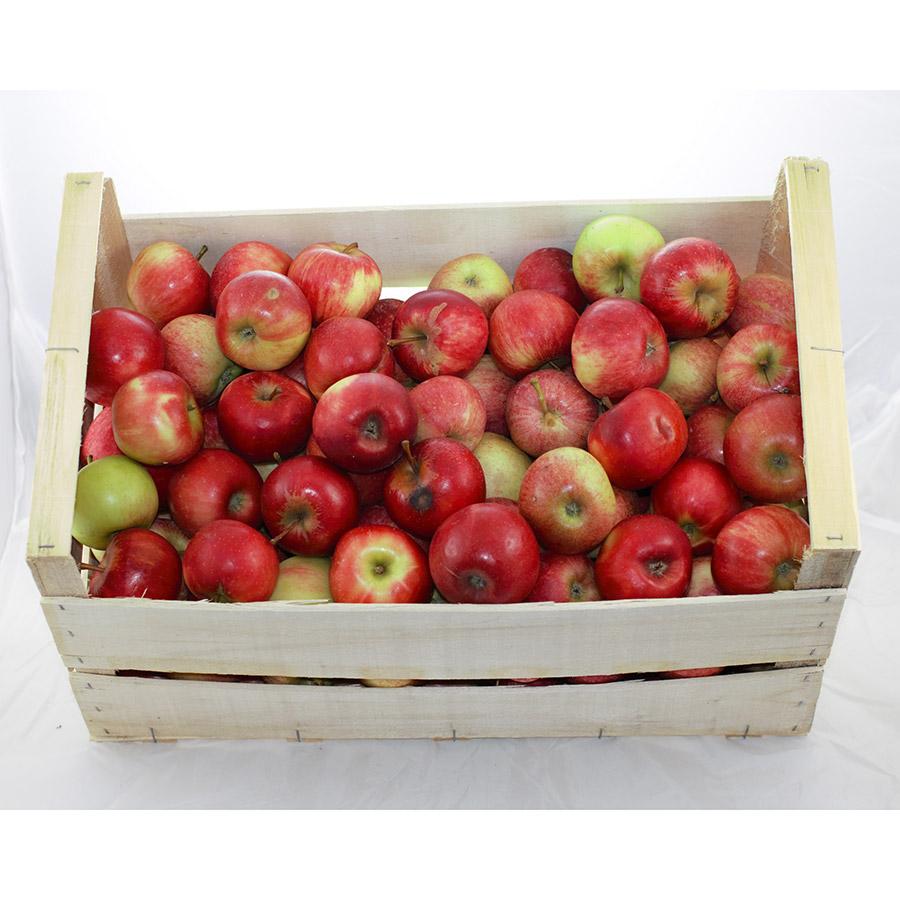 Caisse De Pomme Vide industrie pomme 15 kg en caisse
